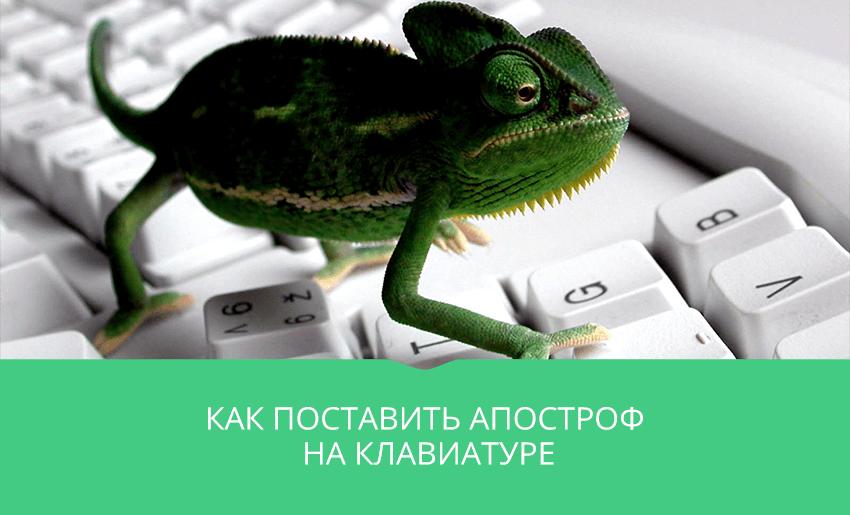 хамелеон на компьютерной клавиатуре